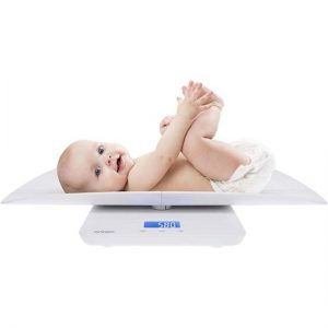 DS1100 Digital Scales